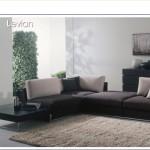 levian3